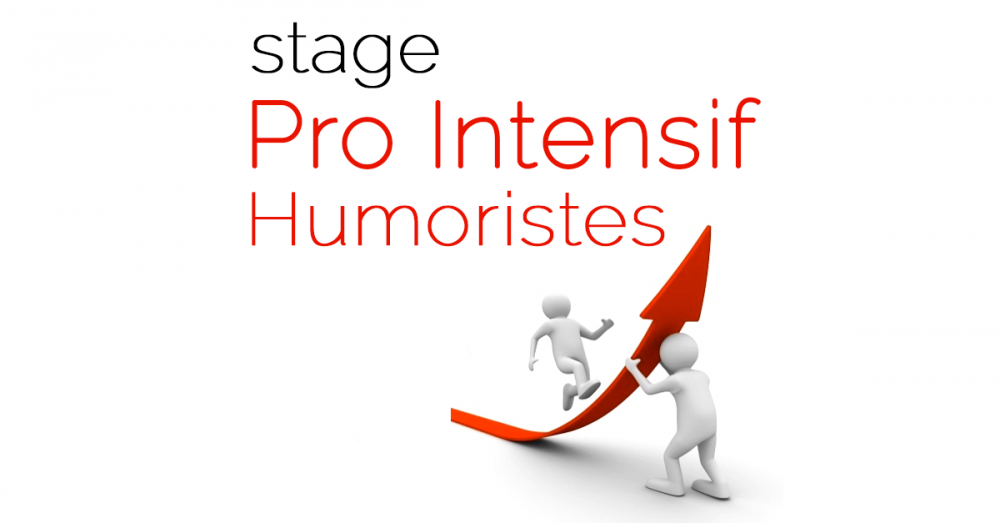 photo de Stage « Pro Intensif Humoristes »